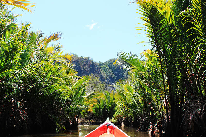 boat ride palm oil tree river bukit rammang rammang makassar south sulawesi toraja indonesia_agirlnamedclara