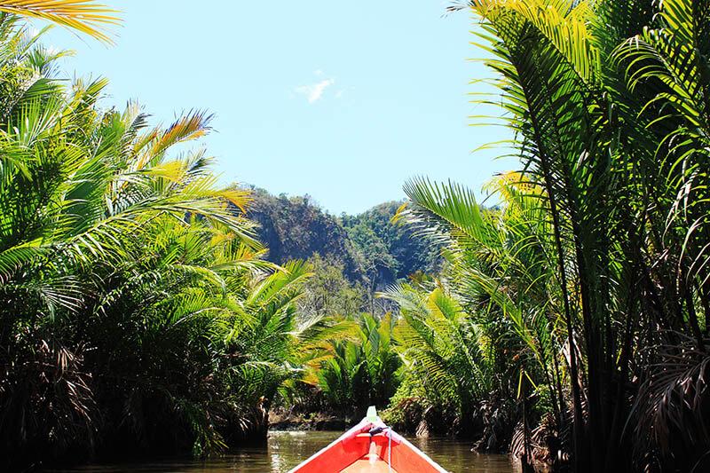 boat ride palm oil tree river bukit rammang rammang makassar south sulawesi toraja indonesia_agirlnamedclara