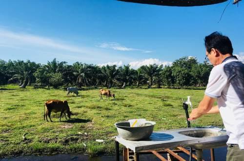 cuti cuti malaysia sekinchan kuala selangor man washing hand cow grass blue sky background agirlnamedclara