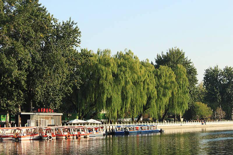 willow trees houhai lake boat sunset beijig agirlnamedclara