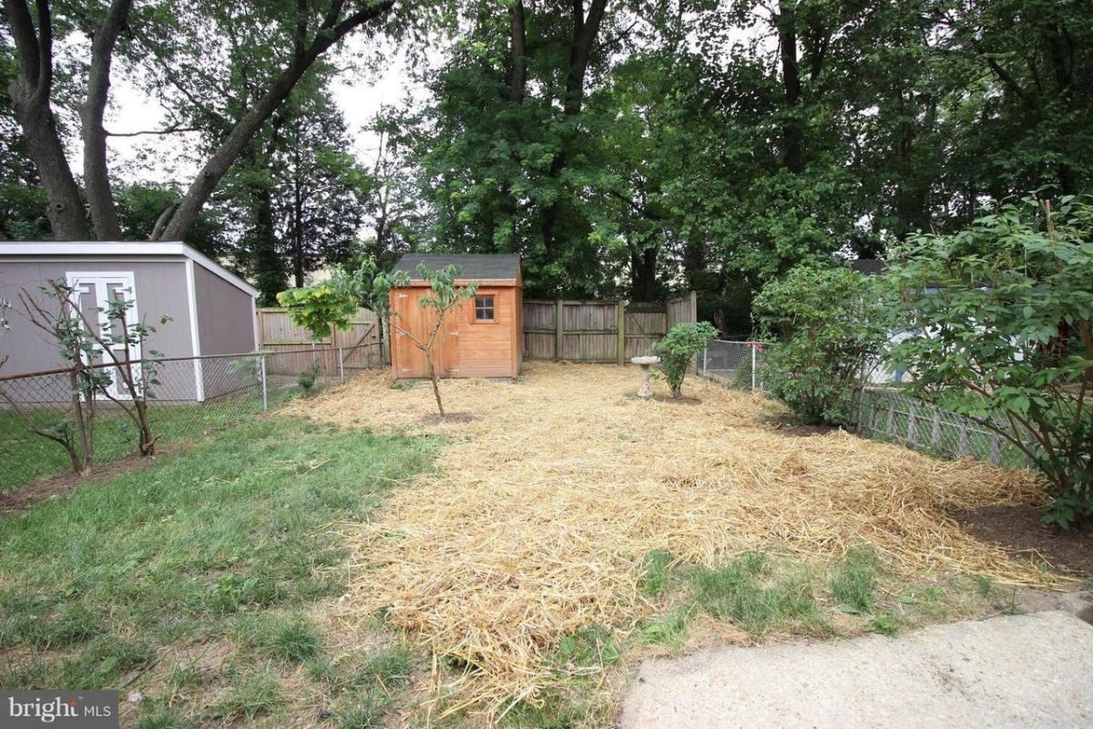 How to Seed your Yard (Overseeding)