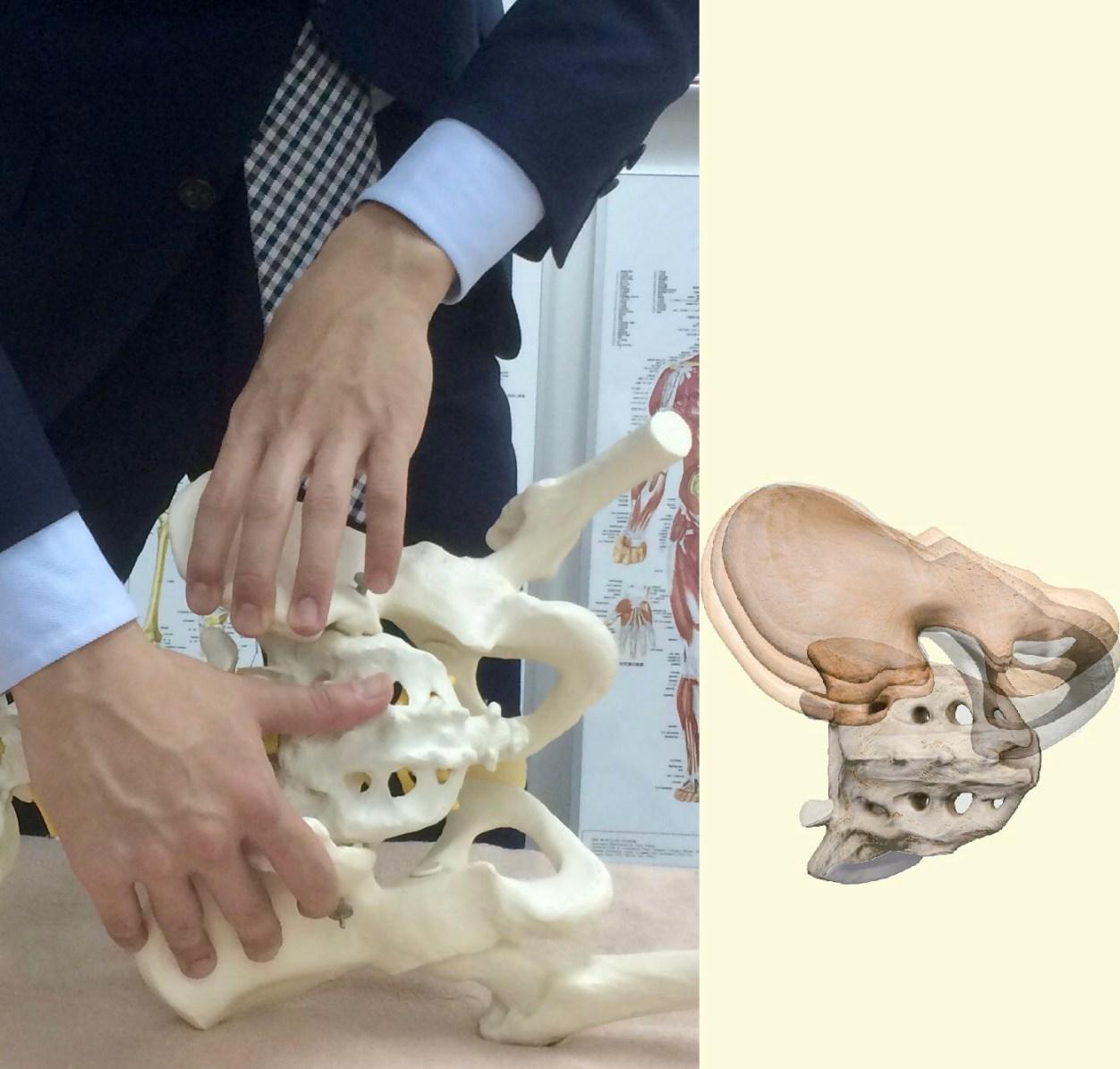 仙腸関節の施術