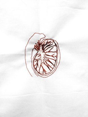 VEINS # 15 / sewed drawing with red thread on white fabric / 50x50 cm / 2013