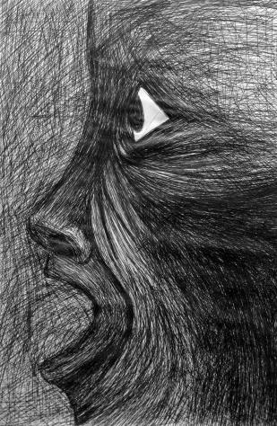 DAILY / FACES / ballpoint pen drawings / 2003