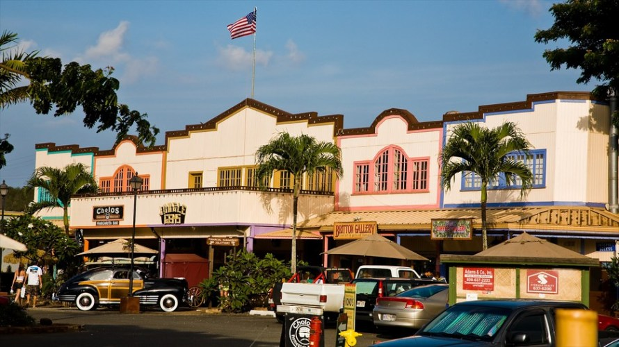 haleiwa town north shore