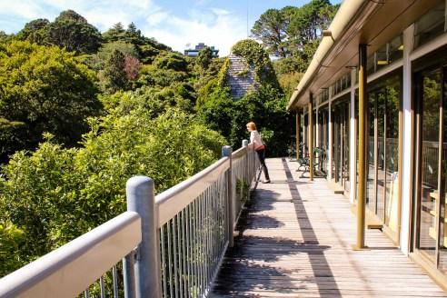 Botanic Gardens, Wellington, New Zealand