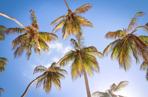 The long and somewhat inconvenient story of why I'm in Barbados