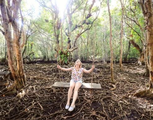 Mangroves at Ban Tha Ranae, Trat, Thailand