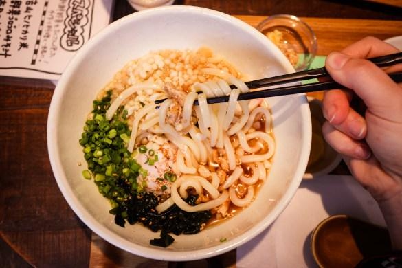 Vegetarian udon noodle soup