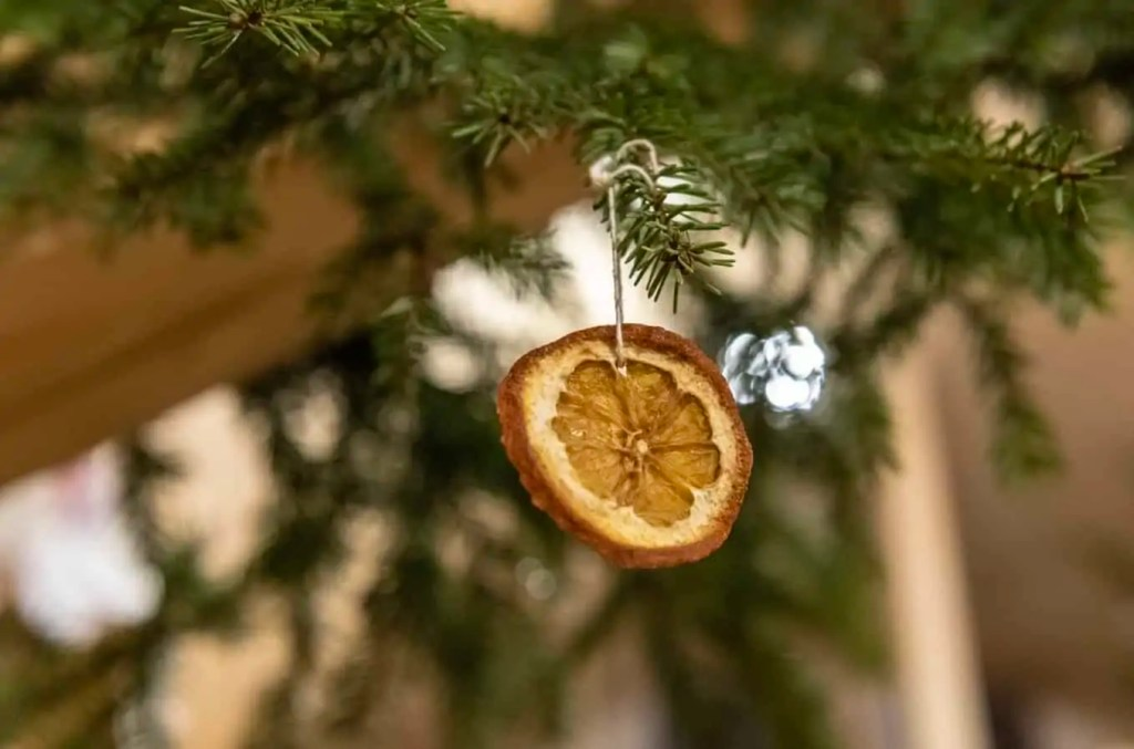 A homemade Christmas decoration orange, hanging on a tree