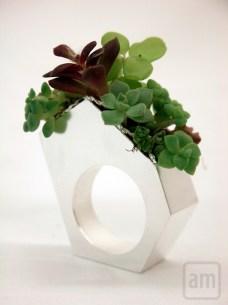 Succulent Garden Study Ring