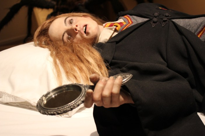 Petrified Hermione Granger