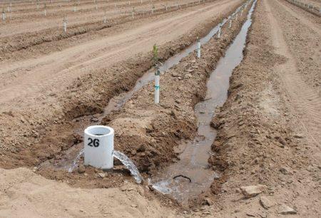 Medium Water Farm