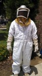 Bee inspections