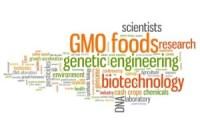 GMO questions