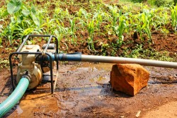 Water pump in the field during dry season