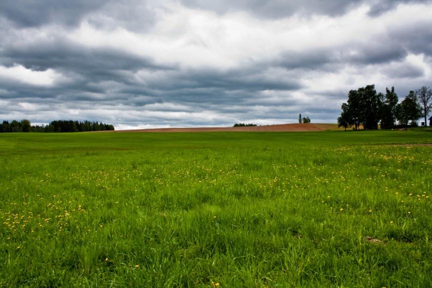 conservation grasslands