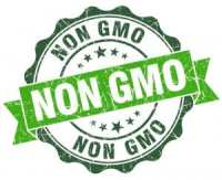 non gmo project green vintage seal