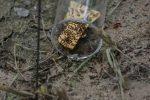 Identifying Ants