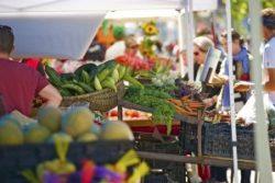 Farmers Market in San Francisco, California