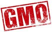 GMO Label Law