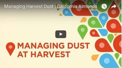 managing dust