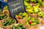 certified organic farmers