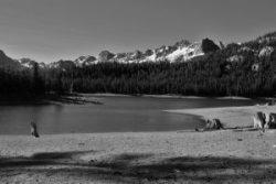 horseshoe-lake-mammoth-lakes-california