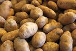 russet-potatoes-deregulation