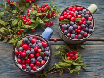 Bueberries and Cranberries