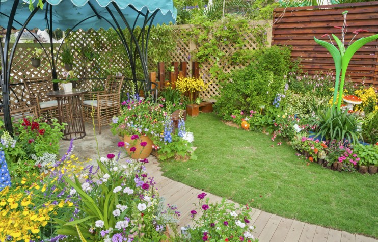 transform backyard oasis