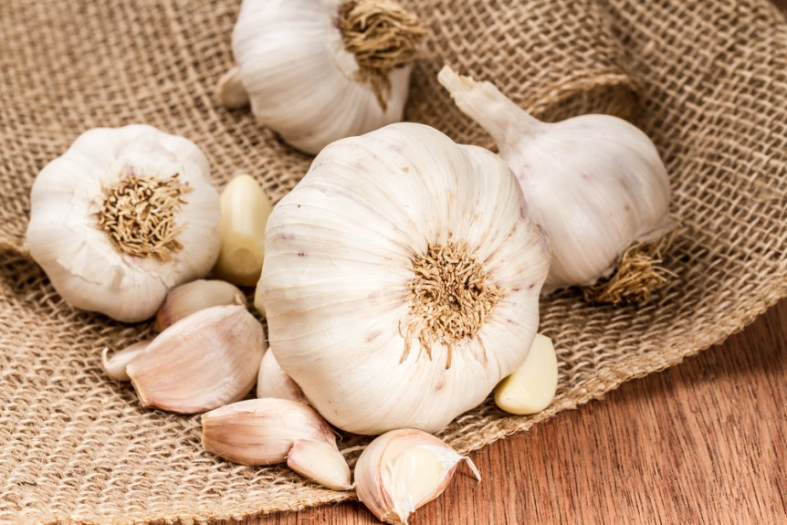 national garlic day