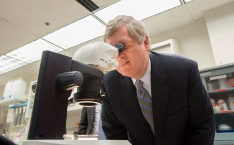 Agriculture Secretary Tom Vilsack looks through a microscope at plant tissues at the USDA Agriculture Research Service (ARS) National Center for Genetic Resources Preservation (NCGRP) Tissue Culture Preparation Laboratory in Ft. Collins, CO.