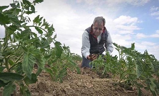 Jesse Sanchez, organic farmer