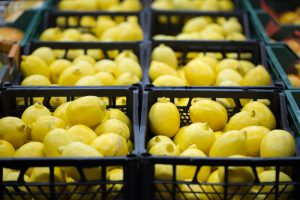 Ban on Argentinian Lemons