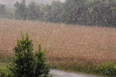Drenching Rains