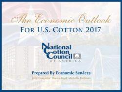national cotton council economic outlook