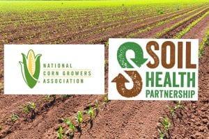 soil health survey
