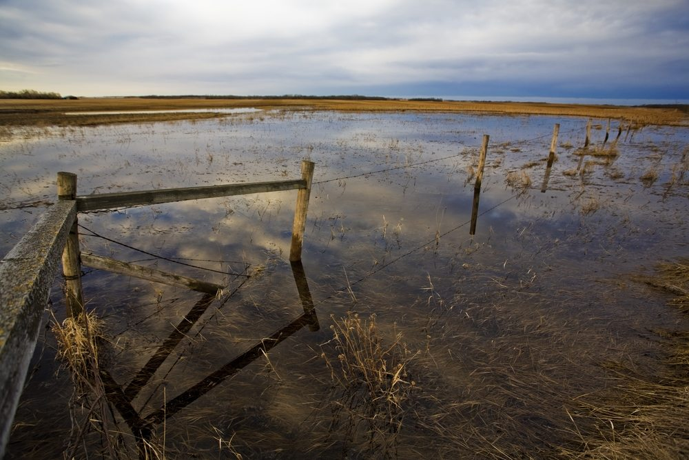 Clean Water Action Group Opposes WOTUS Repeal