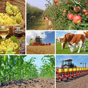changes to California agriculture
