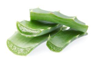 Pieces of aloe vera.