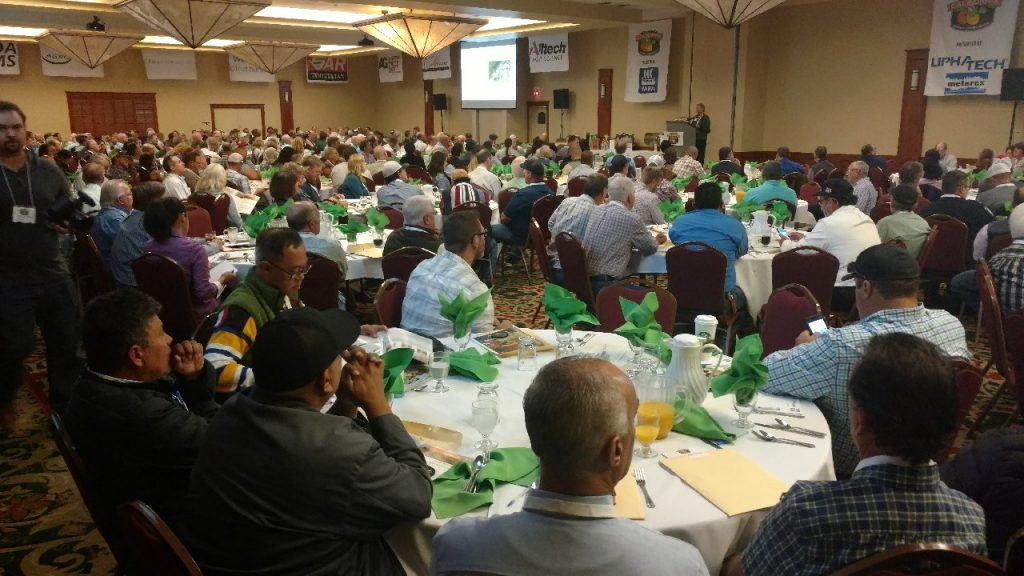 Optimism at the California Citrus Conference