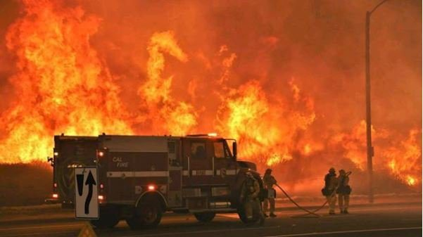 Thomas Fire Scorches Avocado Acreage