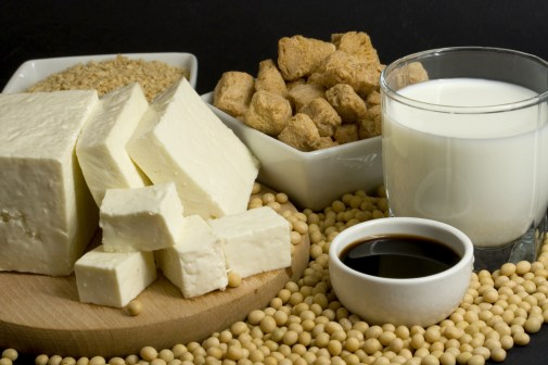 Various soy products used in vegetarian cooking