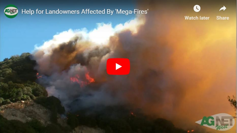 Help for Landowners Affected By Mega-Fires