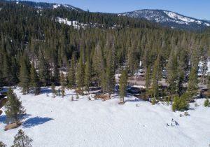 final snow survey