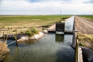 new water plan