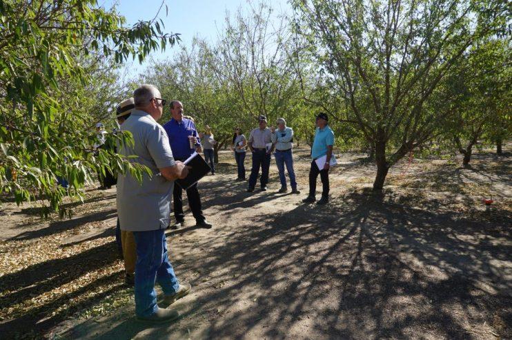 Yara Incubator Farm Meeting