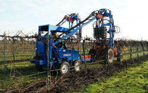 Winegrape Mechanization