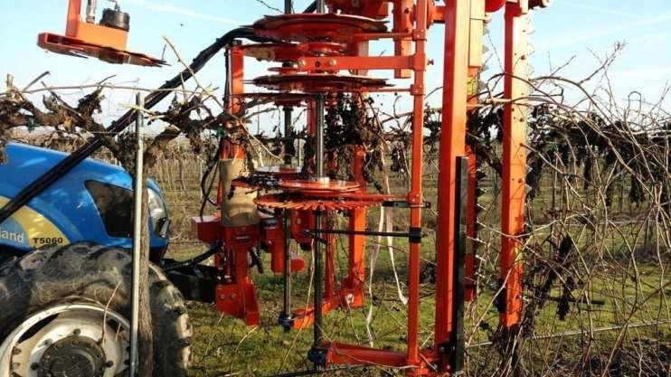 mechanical pruning